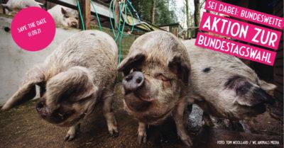 Aktionstag Tierschutz